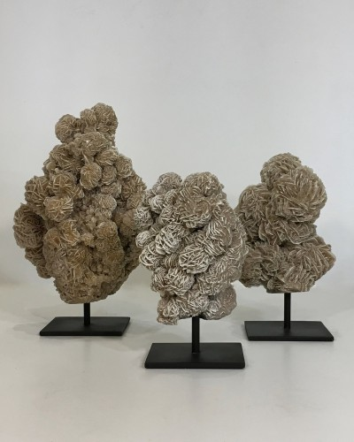 pieces of small desert roses mineral clusters on metal stand
